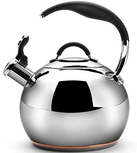 Chen Silbando Tetera de té, la Tetera de Acero Inoxidable ...