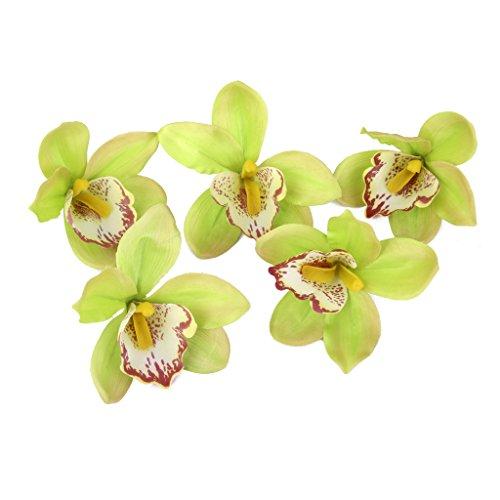 20pcs 11cm Artificial Silk Orchid Dendrobium Flower Heads Decor ()