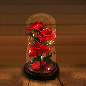 URBANSEASONS Beauty and The Beast Rose Enchanted Rose,Red Silk Rose and Led Light with Fallen Petals in Glass Dome on Wooden Base, for Valentine's Day Wedding Anniversary Mother's Day Birthday Party 3