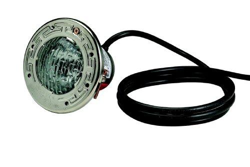 Pentair 77362000 Stainless Steel AquaLight Halogen Quartz Light 120-Volt 250-Watt, 200-Feet Cord (Stainless Pacfab Steel)