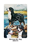 Best Ruth Maysteads - Bernese Mountain Dog Playing Cards - Artwork Review