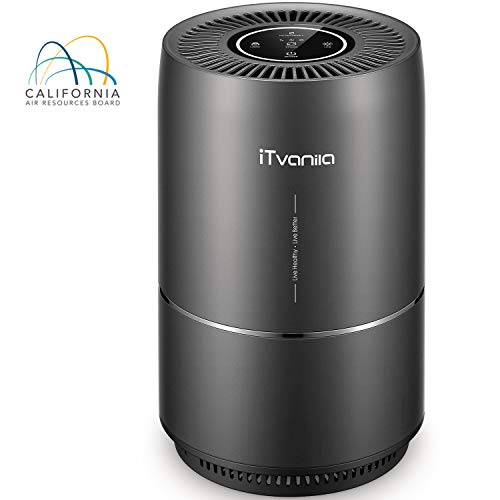 iTvanila AirPurifier, Home Air Purifiers for Smokers Odor Pets, 3in1 True HEPA Filter, Quiet in Bedroom, Filtration System Cleaner, Optional Night Light, 2 Years Warranty