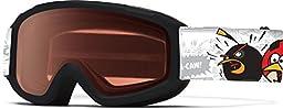 Smith Optics Sidekick Junior Series Youth Snocross Snowmobile Goggles Eyewear - Black Angry Birds/RC36/ Small