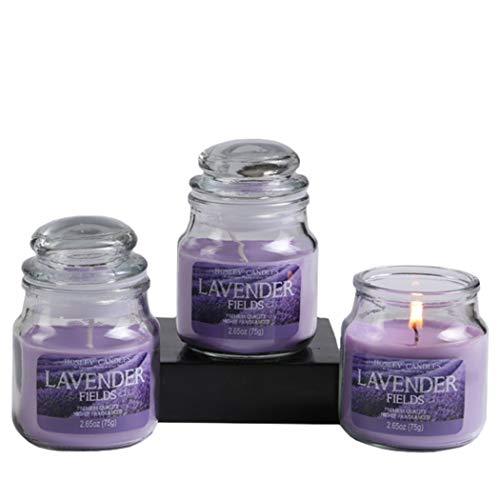 Hosley Set of 3 Lavender Fields Highly Scented, 2.65 Ounce Wax, Jar Candle. We Using a Wax Blends with Essential Oil Infused Fragrance Ingredients to Create a Highly Fragranced Aroma. O4