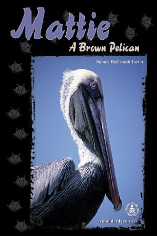 Mattie: A Brown Pelican (Cover-To-Cover Chapter Books) pdf