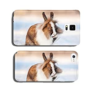 Little miniature rabbit washing the paws in winter cell phone cover case Samsung S6