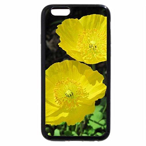 iPhone 6S / iPhone 6 Case (Black) Yellow poppies