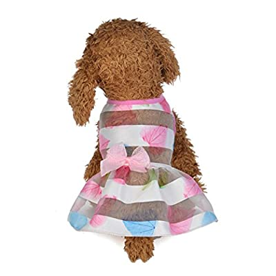 Wakeu Small Dog Girl Dress Pet Puppy Transparent Colorful Vest Shirt Clothes