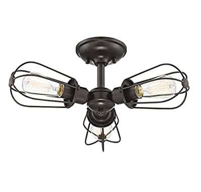 Trade Winds Lighting TW60043ORB Vintage Industrial Retro Metal Wire Loft Close to Ceiling Semi-Flush 100 Watts, in Oil Rubbed Bronze