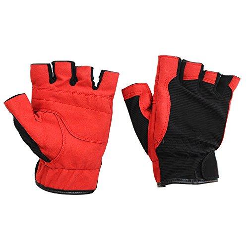 Zantec Guante de pesca femenino cálido espesar guantes antideslizantes de las mujeres con la mitad de los dedos expuestos Azul Claro