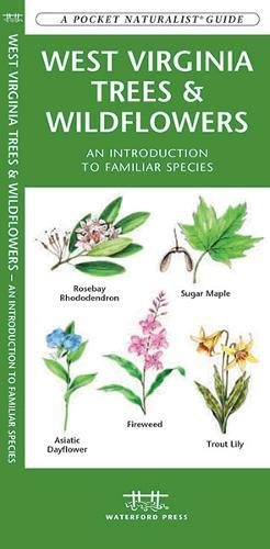 West Virginia Flower - West Virginia Trees & Wildflowers: A Folding Pocket Guide to Familiar Species (A Pocket Naturalist Guide)