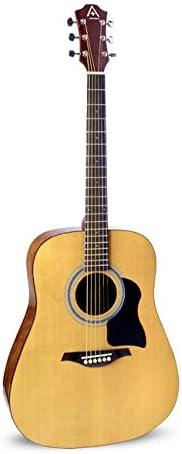 Guitarra acústica Hohner de 6 cuerdas (AS220N): Amazon.es ...