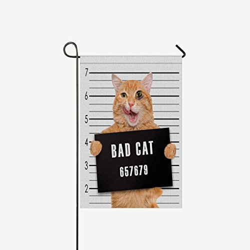 (INTERESTPRINT Garden Flag House Banner Funny Cat Holding a Banner, Decorative Yard Flag for Wishing Party Home Outdoor Decor, Polyester 12