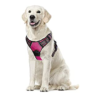 Eagloo Dog Harness No Pull, Walking Pet Harness with 2 Metal Rings & Handle Adjustable Reflective Breathable Oxford Soft Padded Easy Control Front Clip Vest Harness Outdoor for Small Medium Large Dog
