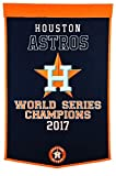 Houston Astros 2017 World Series Champions Dynasty Banner Pennant