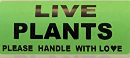 1 Roll 1000 Labels 4x2 Green LIVE PLANTS PLEASE HANDLE WITH LOVE Fragile Shipping Labels Stickers