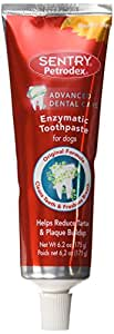 Amazon.com : Petrodex Enzymatic Toothpaste Dog Poultry Flavor, 6.2 ...