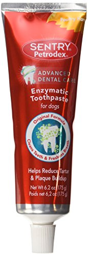 Petrodex Enzymatic Toothpaste for Dogs, Helps Reduce Tartar and Plaque Buildup, Poultry Flavor (Peanut Butter Paste)