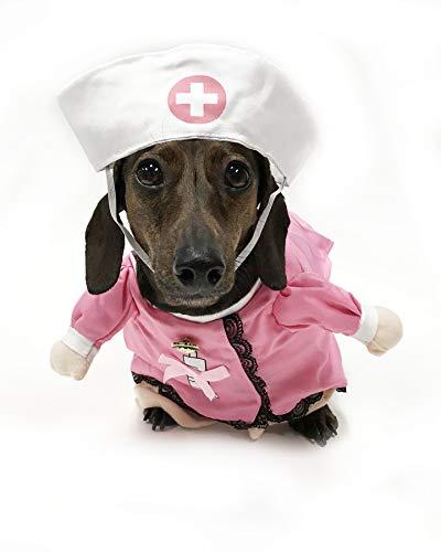 Midlee Fake Arms Nurse Dog Costume (Small Dog Large)]()