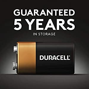 Duracell – AAAA 1.5V Specialty Alkaline Battery – long-lasting battery – 2 Count (Pack of 1)