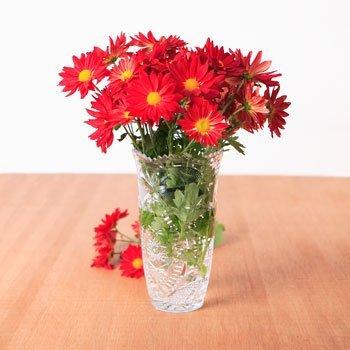 1 X Plastic Cut-Edge Vase, 8