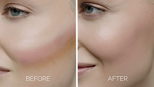 Clarisonic Sonic Foundation Makeup Brush Flawless Makeup