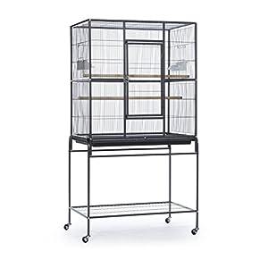 Cockatiel Bird Cages