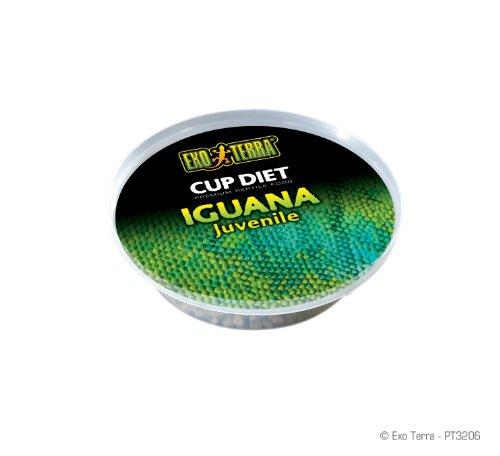 Exo Terra 6-Pack Juvenile Iguana Food, 0.8-Ounce