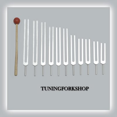 11 Pc Planetary Tuning fork for healing with mallet & Pouch