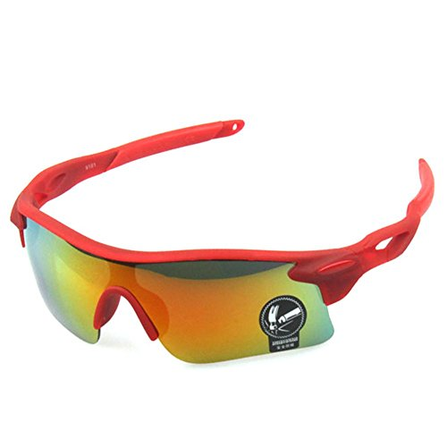 MosierBizne Explosion Colorful Sunglasses Sport Bike Outdoor Riding glasses Windproof Pest Control(C2)