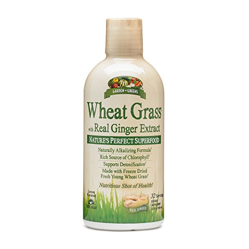 Garden Greens Wheat Grass Ginger product image