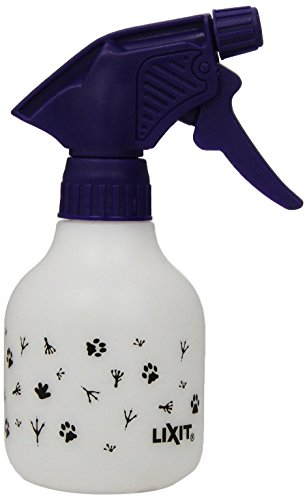 clean up cat urine with bleach