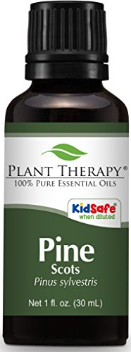 Plant Therapy Pine Essential Oil. 100% Pure, Undiluted, Ther