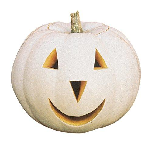 Burpee Lumina Pumpkin Seeds 10 (Best Halloween Pumpkins To Grow)