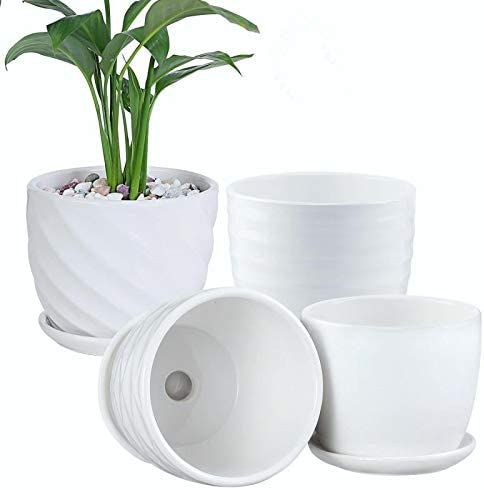 White Ceramic Planter with Attached Saucer