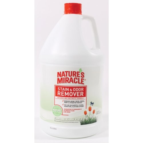 Nature's Miracle Products DNAP5795 Scented Stain and Odor Remover for Pets, Flowering Meadow Scent, 1-Gallon, My Pet Supplies