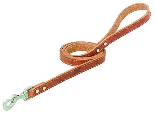 Terrain D.O.G. Harness Leather Dog Leash ()