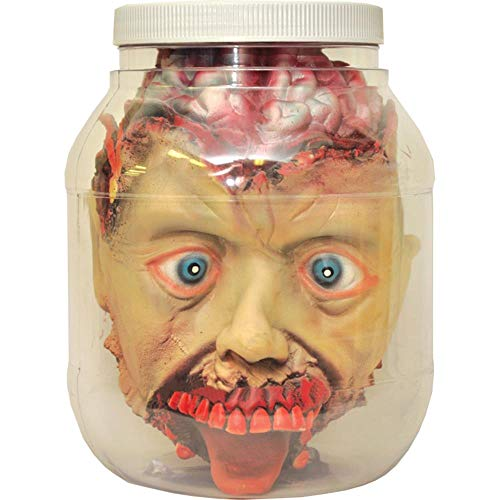 Laboratory Head in a Jar Prop For Halloween