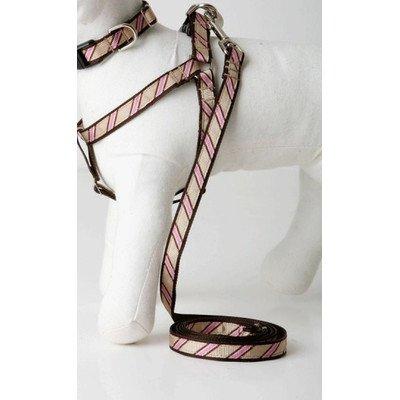 """Varsity Stripe Dog Lead Size: 0.5"""" W x 60"""" L"""
