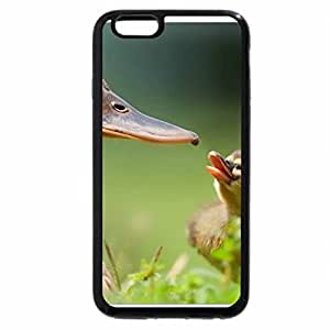 iPhone 6S / iPhone 6 Case (Black) Mother duck