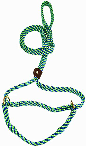 - Lone Wolf 5/8 x 6' Flat Braid Martingale Leash Lime Green/Pacific Blue Spiral