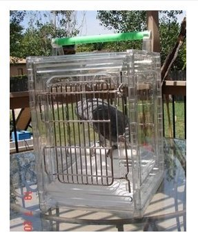 P & P Acrylic Parrot Travel Carrier CAGE Bird Cages Toy Toys