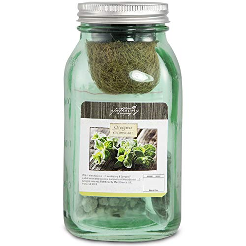 APOTHECARY Decorative Oregano Growing Kit in Mason Jar, All-Inclusive Self-Watering Kit Includes Glass Jar, Oregano Seeds, Growing Medium, Hydroponic Wick, Plant Food, and Instructions (Best Herbs To Grow In Pots Indoors)
