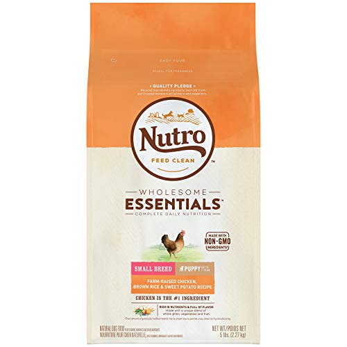 NUTRO WHOLESOME ESSENTIALS Natural Small Breed Puppy Farm-Raised Chicken, Brown Rice & Sweet Potato Recipe 5 Pounds (Best Puppy Food For Toy Breeds)