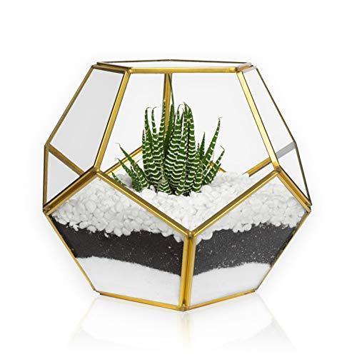 MOCTUS Glass Geometric Terrarium – Succulent Planter – Brass Container Box for Garden/Outdoor/Indoor/Home Decoration, Wedding Gift, Centerpiece – Gold Sphere Pot Holder for Display/Tabletop/Desktop