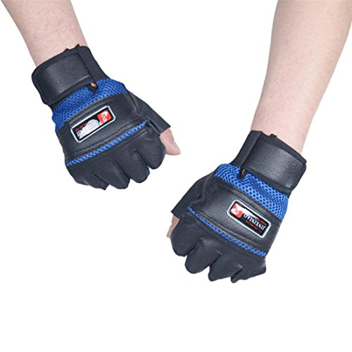 HANYI Outdoor Sports Shockproof Bicycle Cycling Biking Hiking Garden Training Gloves (Blue)