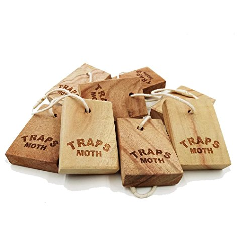 greenle-u002-natural-camphora-fresh-root-block-clothes-protector-and-moth-repellent-storage-accessor