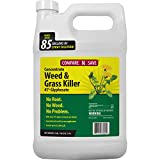 Compare-N-Save 016869 Concentrate Grass and Weed