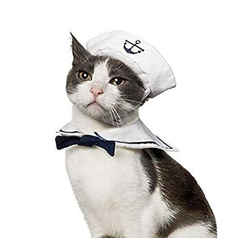 Amazon.com: Auch - Disfraz de marinero para perro, gato o ...