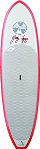 Surftech Lopez Surf Music Surfboards (Red/Grey, 9- Feet 0-Inch) from FBAPowersetup